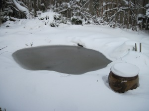 The Pond Vanishing Under Snow and Ice