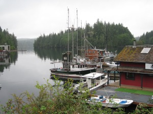 More of East Bamfield