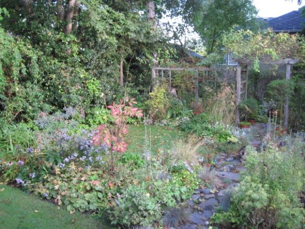 Back Garden, Fall 2010