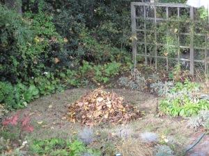 A classic leaf pile.