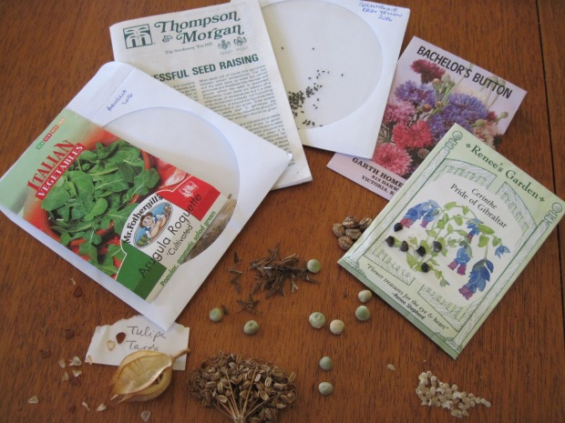 seeds and seed packets