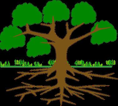 tree-309046__340