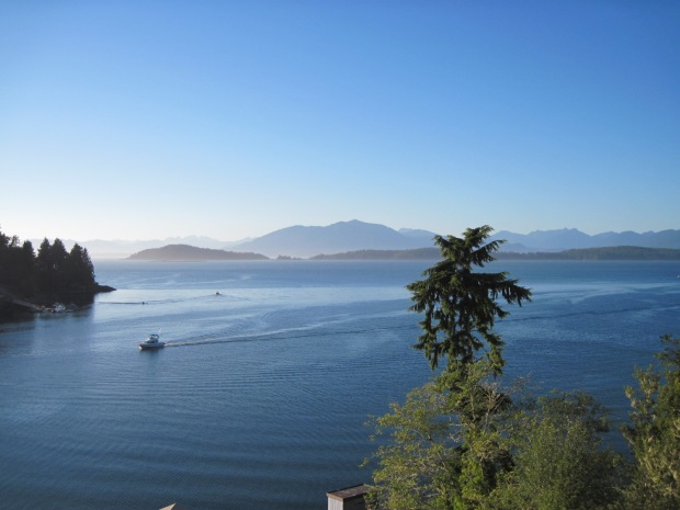 view from Marine Sciences Centre, Bamfield BC