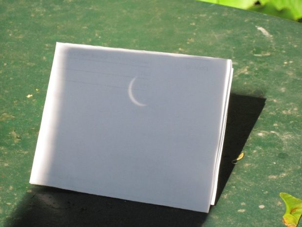 August 21 2017 partial solar eclipse, back garden