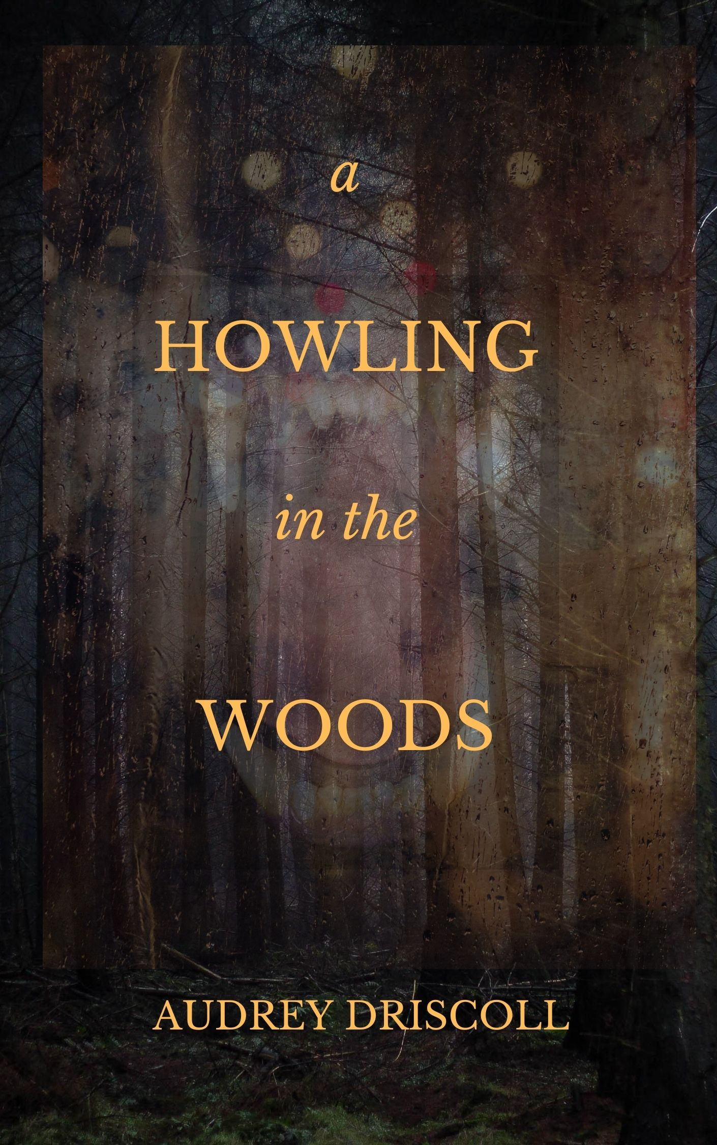 Image for A Howling in the Woods story