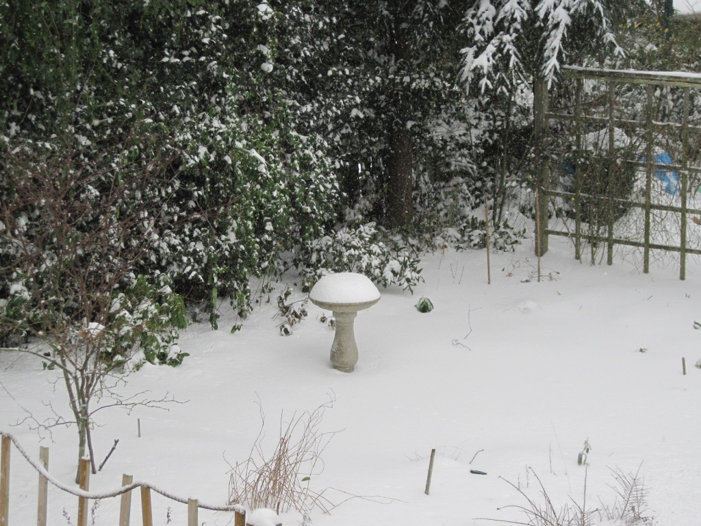 Bird bath and snow February 2021