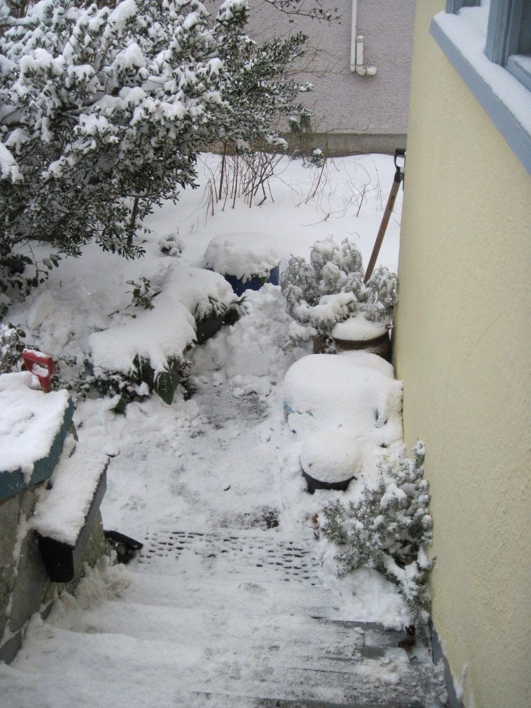 Snow on front steps February 2021