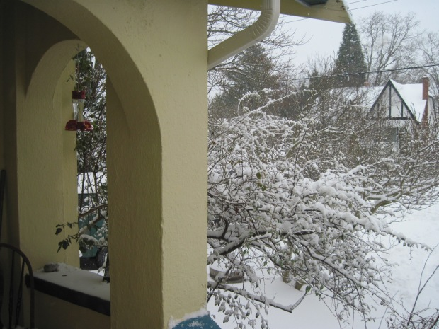 Front arches and cotoneaster with snow February 2021